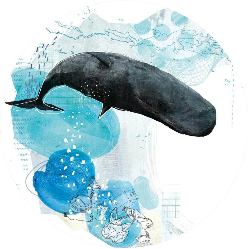 whale, #illustratorswhocare, agm, annagoodsonmanagement, zellmer, enviroment, plastic, müll